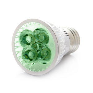 RubyLux All Green LED Bulb - Small - 2nd Generation 120V US & Canada