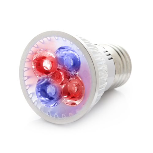 RubyLux Red & Blue LED Bulb - Small - 2nd Generation US & Canada 120V
