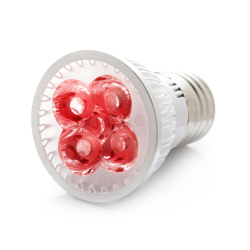 RubyLux All Red LED Bulb - Small - 2nd Generation - 120V for US