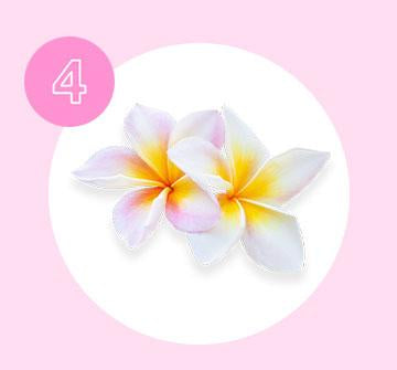 Monoi de Tahiti an ancient tradition of soaking coconut oil in Tiare petals, Monoi helps soothe dry hair.