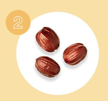 Jojoba supports scalp health and may assist with hair growth