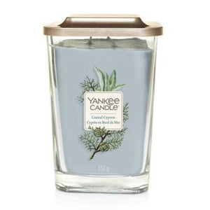 Coastal Cypress Large Yankee Square Jar