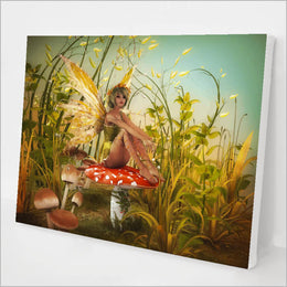 Toadstool Fairy kit