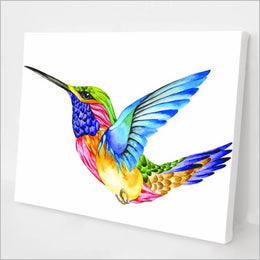 Rainbow Bird kit
