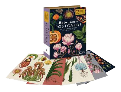 Botanicum Postcards - Welcome To The Museum  by Katie Scott and Kathy Willis