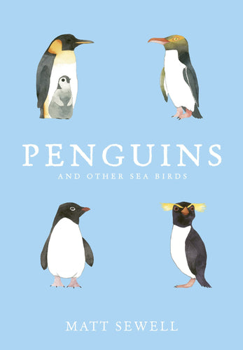 PENGUINS AND OTHER SEA BIRDS - MATT SEWELL