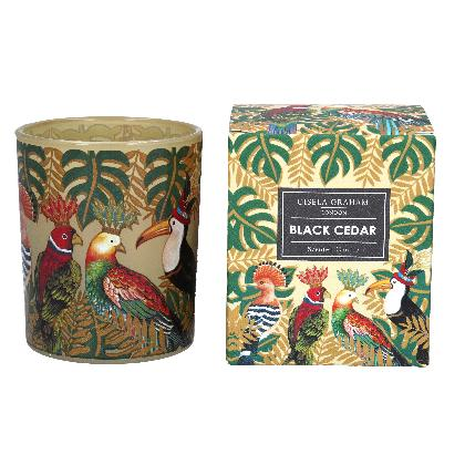 Regal Birds Boxed Candle Pot, Lge
