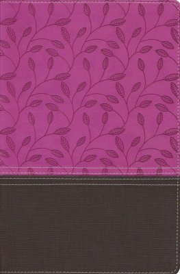 NIV Zondervan Study Bible--soft leather-look, orchid/chocolate