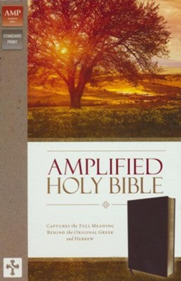 Amplified Thinline Holy Bible--bonded leather, burgundy