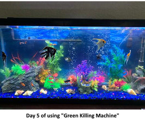 """Green Killing Machine 3W"" Drop-In Suction Cup Installation, Fully Enclosed Bulb, Bacteria-Killing Full UV Sterilizer Kit for Crystal Clear Water and Parasite Management (for Freshwater and Saltwater Aquariums up to 20 Gallons┃comes with Pump)"