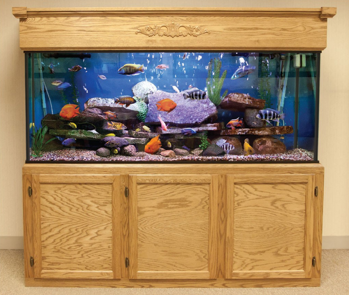 Custom LIFETIME 180 gal. Glass Aquarium Tank