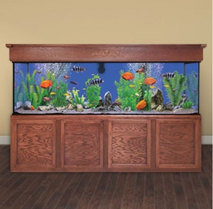 Custom LIFETIME 280 gal. Glass Aquarium Tank