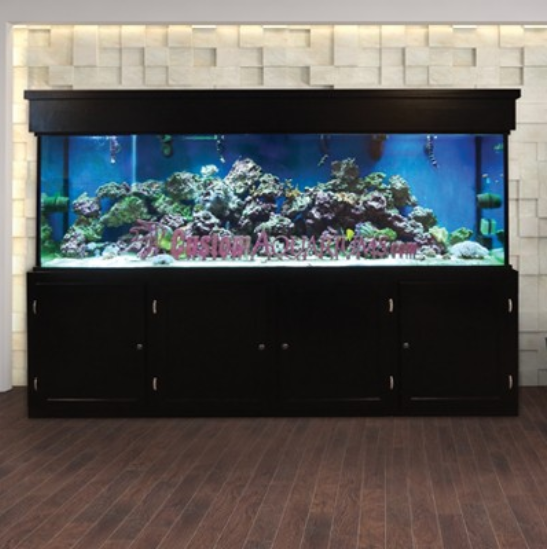 Custom LIFETIME 300 gal. Glass Aquarium Tank