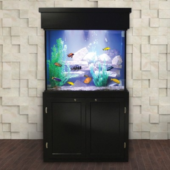 Custom LIFETIME 65 gal. Glass Aquarium