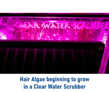 """CW-50"" Natural Nutrient Export, Hair Algae Growing, Easy and Fast Cleanup Algae Scrubber for Lessening or Eliminating Water Changes (Tank Size = 60-100 Gallons Required Flow = 150 GPH)"