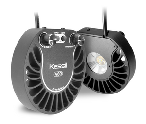 Kessil A80 Tuna Blue LED Fixture