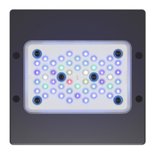 EcoTech Radion G5 XR15 BLUE Blue-Tinted, Wide PAR Distribution, Programmable LED Reef Lighting Fixture