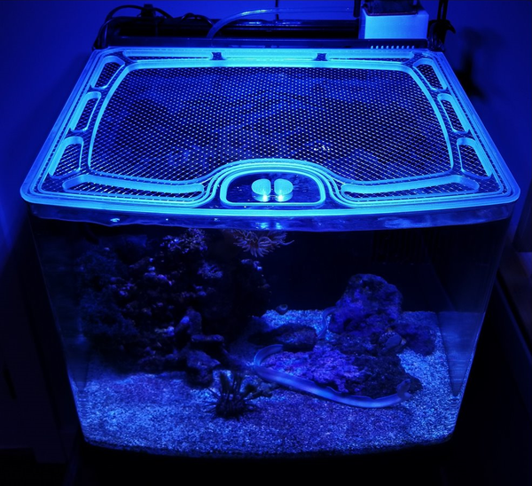 Custom, Screen Top, CNC-Precision Cut Polycarbonate Aquarium Lids for Keeping Jumpers In-Tank (Design Request - We Will Design Your Lid With You and Create a Custom Quote For You)