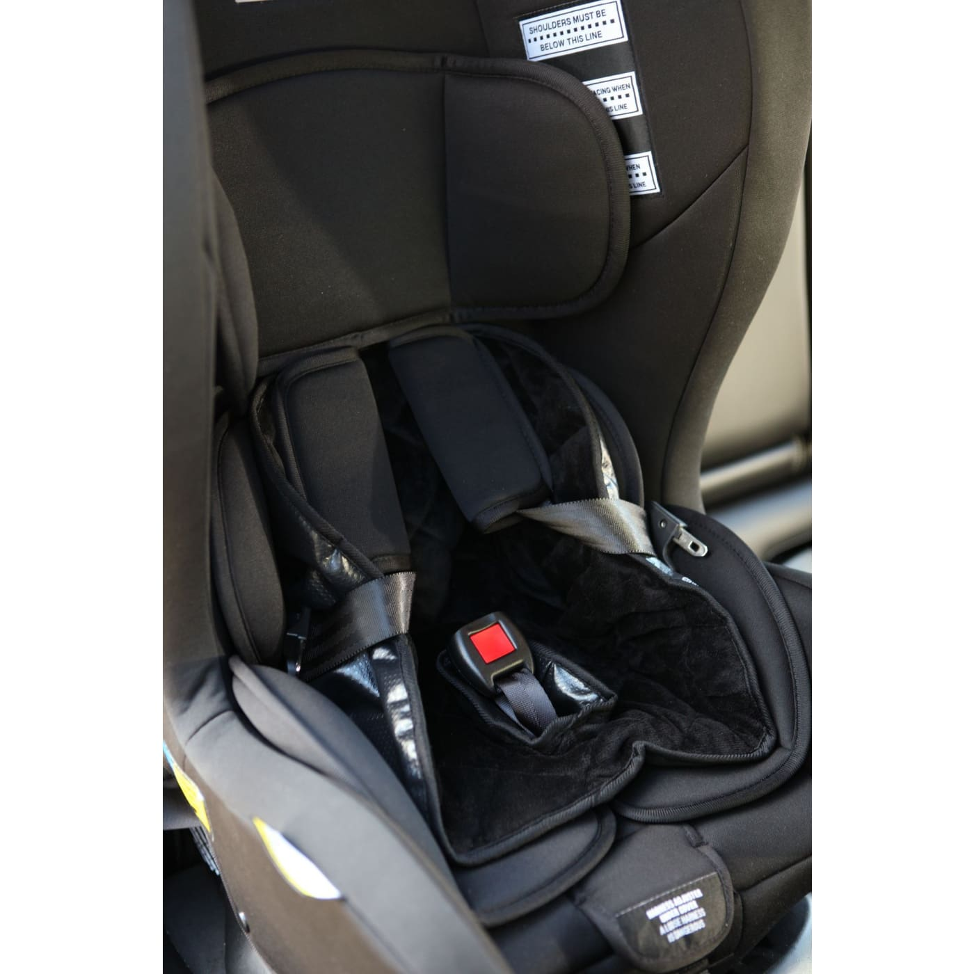 InfaSecure Deluxe Piddle Pad - CAR SEATS - SEAT PROTECTORS/MIRRORS/STORAGE
