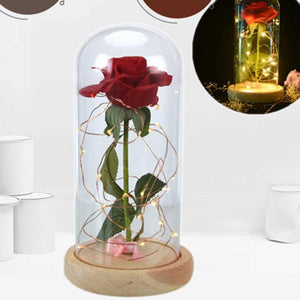 Glass Dome Rose
