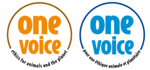 Logos one voice orange et bleu