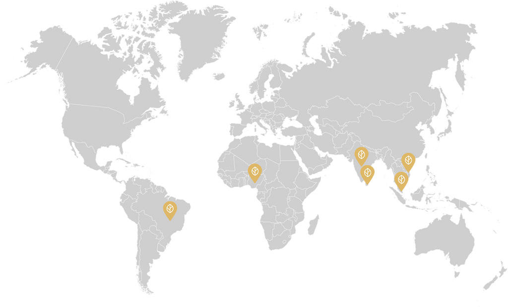 Ingredients Source World Map, Malaysia, Brazil, Vietnam, Sri Lanka, Nigeria and India