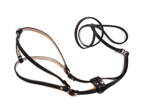 Classic Leather All-In-One Harness - Around The Collar NY