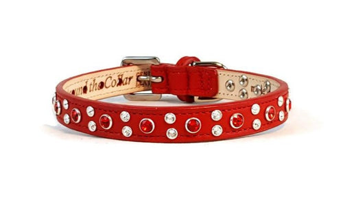 Stella Leather 2 Tone Jewel Dog Collar - Around The Collar NY