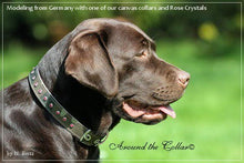 Load image into Gallery viewer, Brie Camouflage Dog Collar w/Leather and Single Row Swarovski Crystals - Around The Collar NY