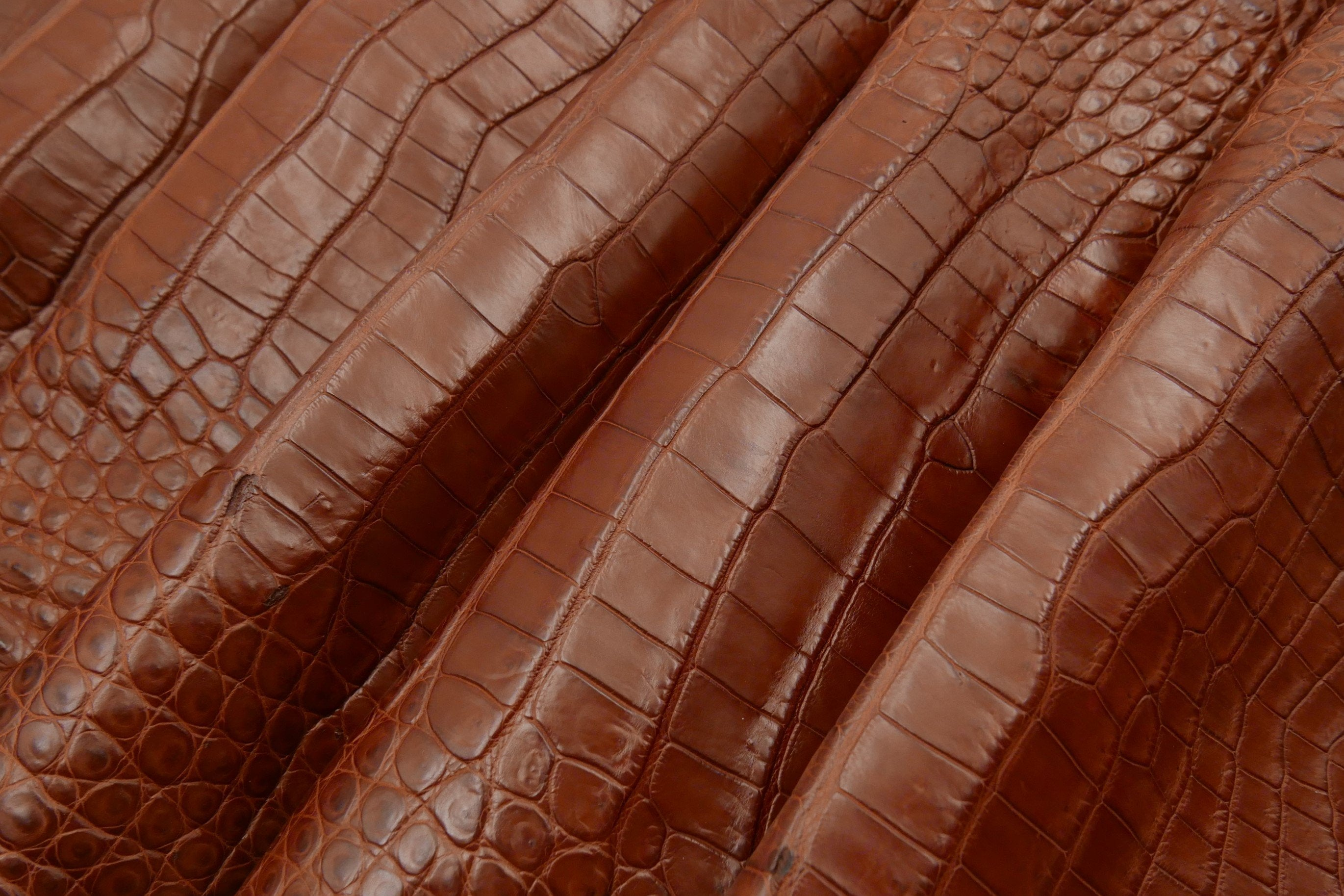 CROCODILE - Red Brown