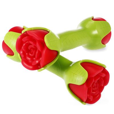 KYTO DB - 3008 Pair of Creative 1kg Female Flower Shape Dumbbells