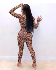 Cheetah Doll Mesh Jumpsuit - Girlsintrendy, Girls In Trendy