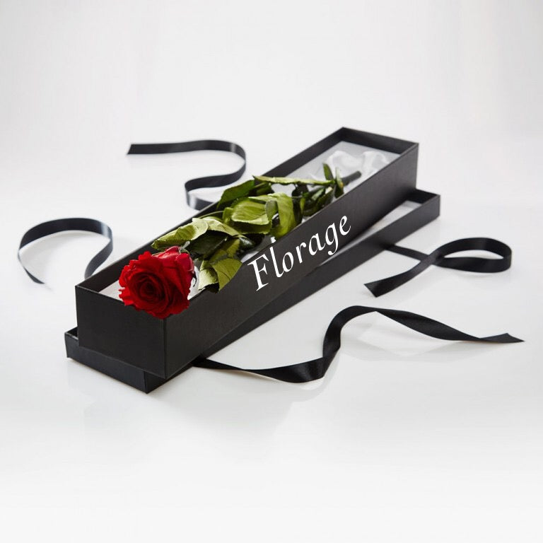 Single Red Rose in Gift Box