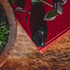 Ethical Black Tourmaline Healing Crystal for Protection, Grounding, and Balancing