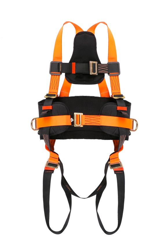 Full Body Harness with Eco Belt