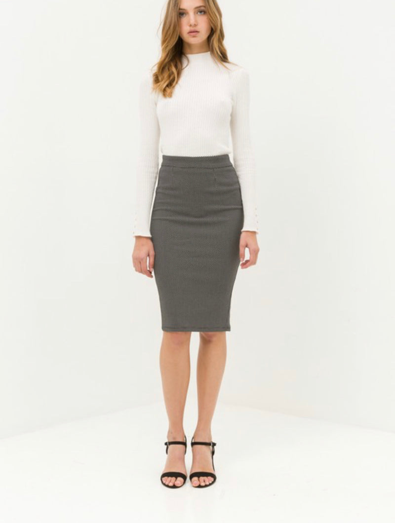 Let's Pencil It In Skirt