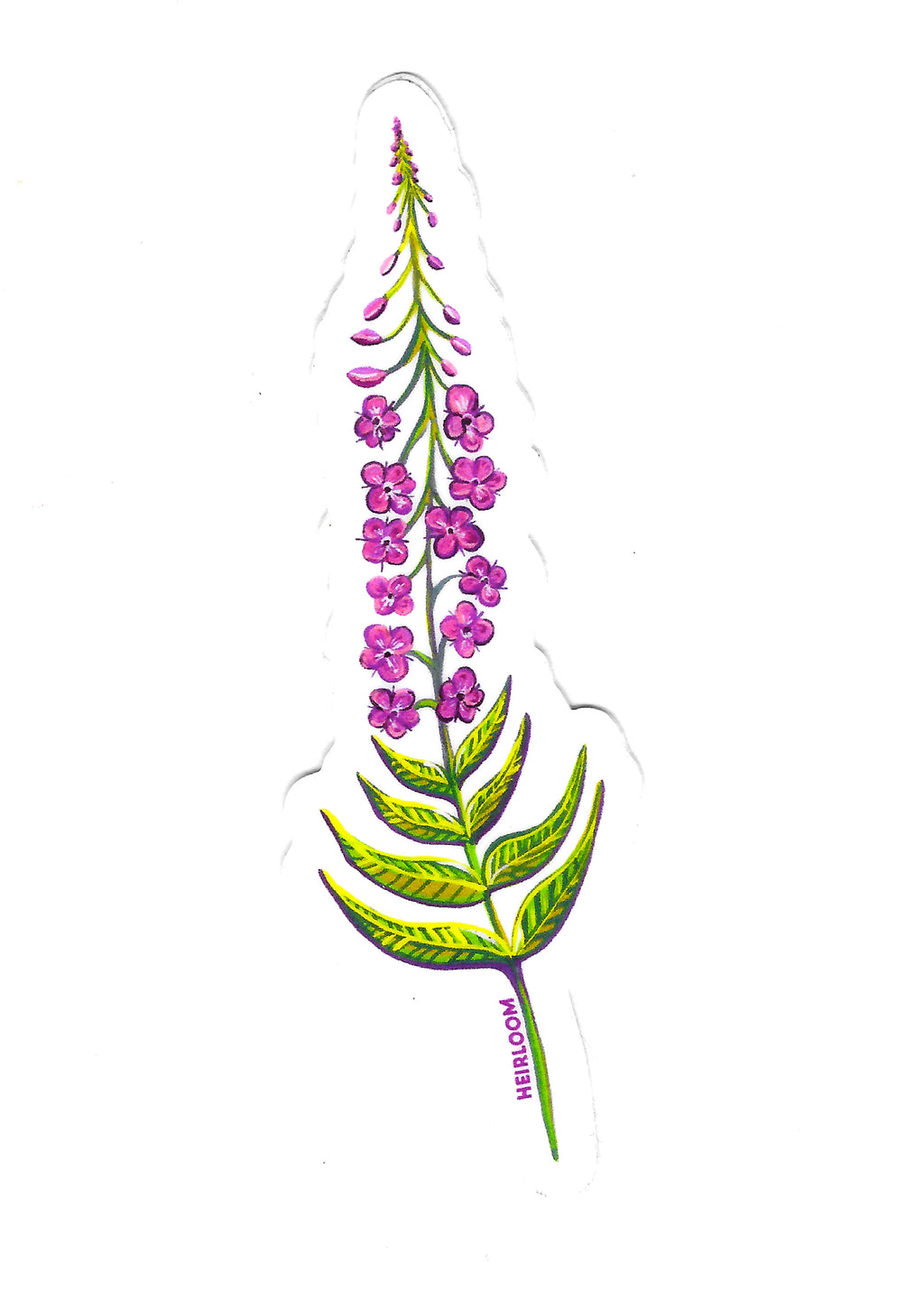Fireweed Wildflower Sticker | Vinyl Decal