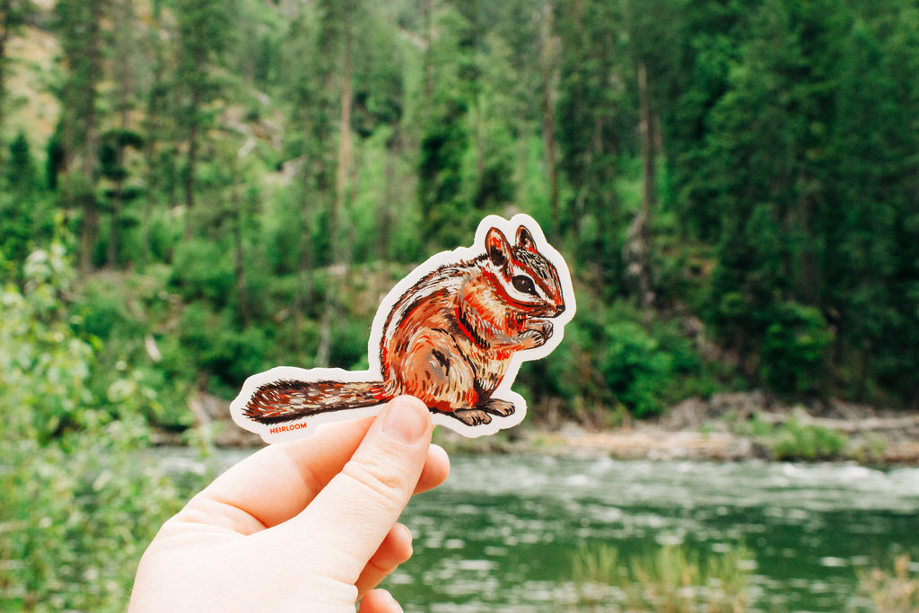 Chipmunk Sticker | Forest Animal Art Decal