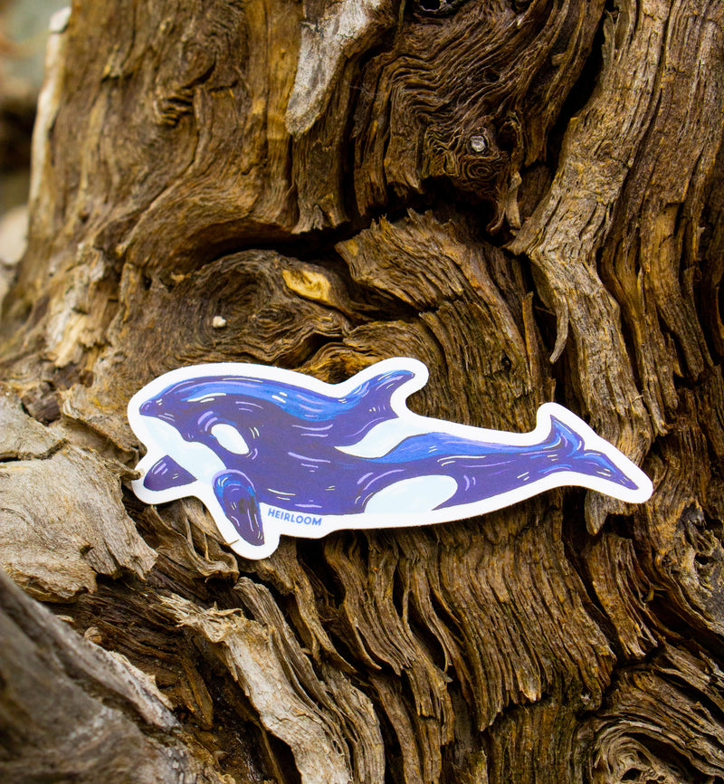 Orca Sticker | Art Decal