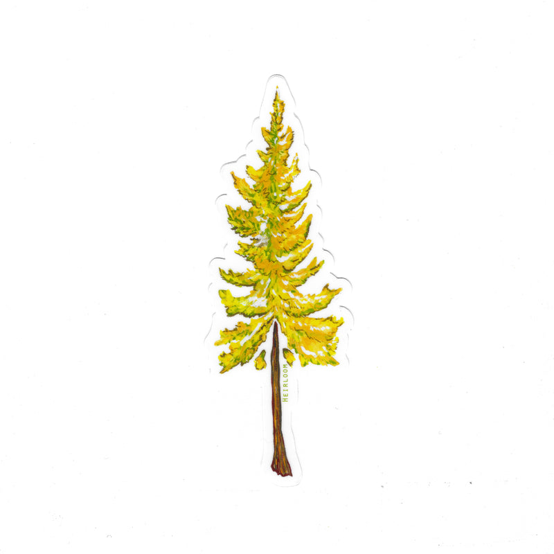 Larch Tree Sticker | Vinyl Decal
