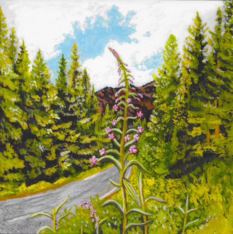 "Roadside Fireweed 8"" x 8"" Art Print"