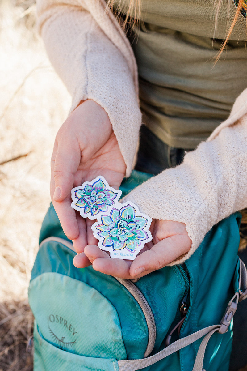 Woman holding a succulent sticker. It is a hand painted design that has been reprinted onto durable vinyl. It is a light green color and look similar to a flower it has highlights of yellows, blues, and purples.