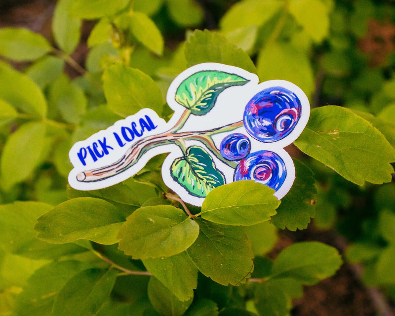 Pick Local Huckleberries Sticker | Vinyl Decal