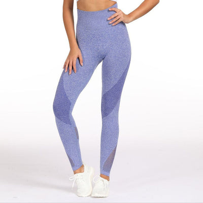 Mesh Stitching Yoga Leggings in Blue | Allure Apparel Co