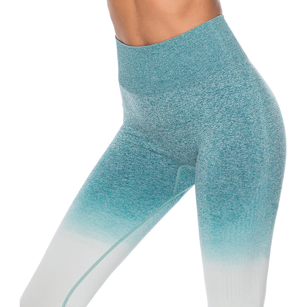Blue Ice Seamless Leggings | Allure Apparel Co
