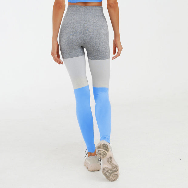 High Waisted Seamless Knit Color-Block Leggings in Blue | Allure Apparel Co