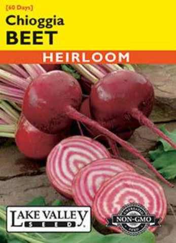 BEET CHIOGGIA (BICOLOR, RED and WHITE)