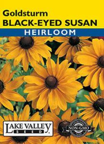 Black Eyed Susan Goldsturm Heirloom