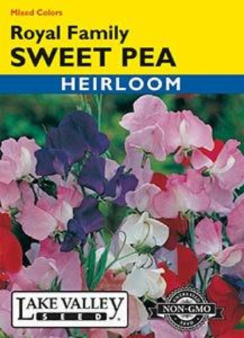 Sweet Pea Royal Family Mixed Colors