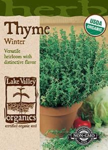 Organic Thyme Winter Heirloom